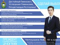 Кандидат в президенты «Республики ШКиД»